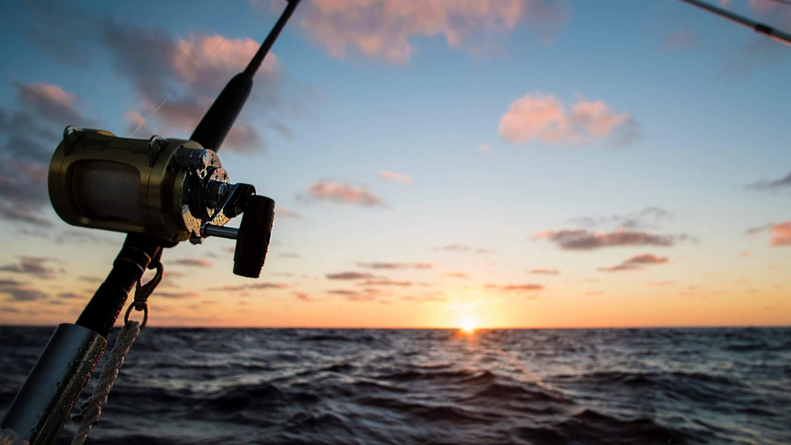 Bass Fishing Rod Selection Guide